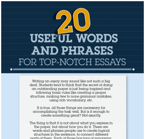 20 Useful Words and Phrases for Top-Notch Essays Infographic