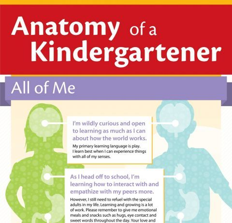 The Anatomy of a Kindergartner Infographic