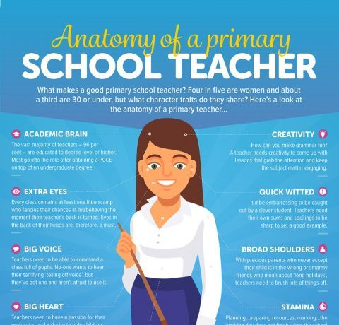 The Anatomy of a Primary School Teacher Infographic