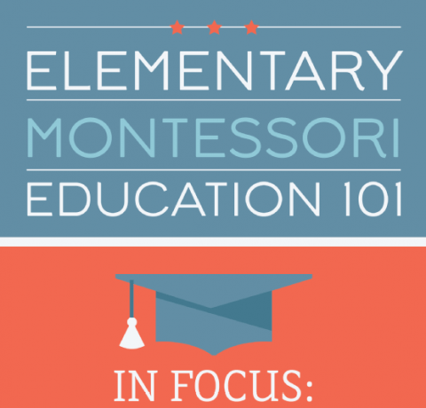Elementary Montessori Education Infographic