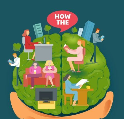 How Our Brain Processes Different Kinds of Content Infographic