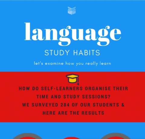 Language Study Habits Infographic