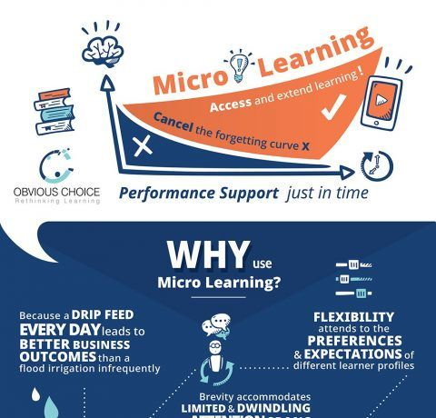 Microlearning: Performance Support That Counts Infographic