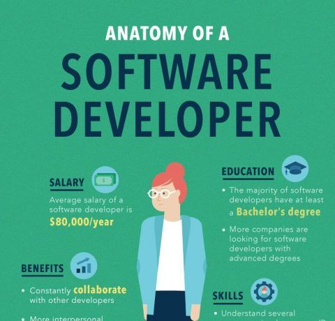Anatomy Of A Software Developer Infographic