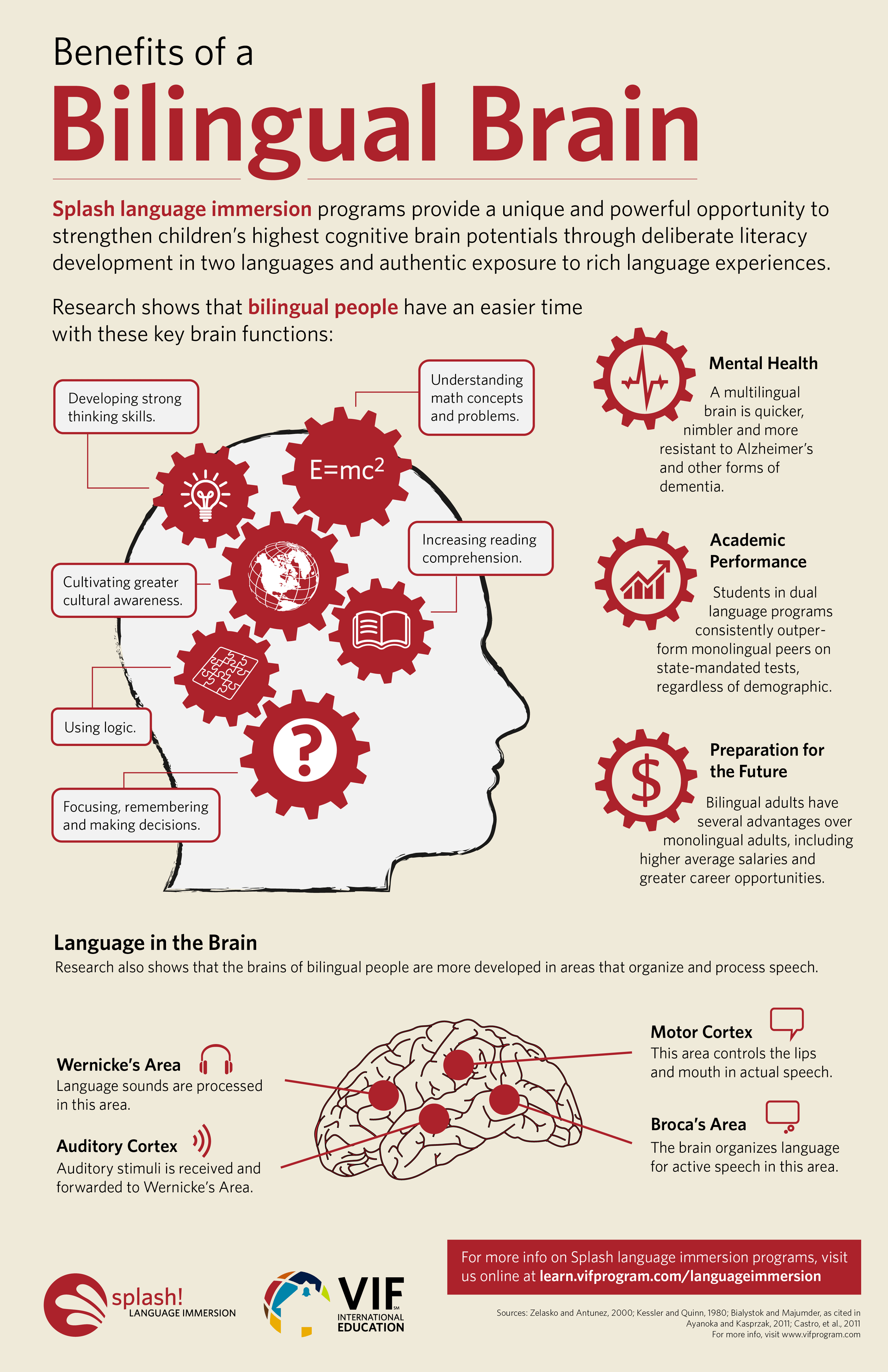 Benefits of a Bilingual Brain Infographic