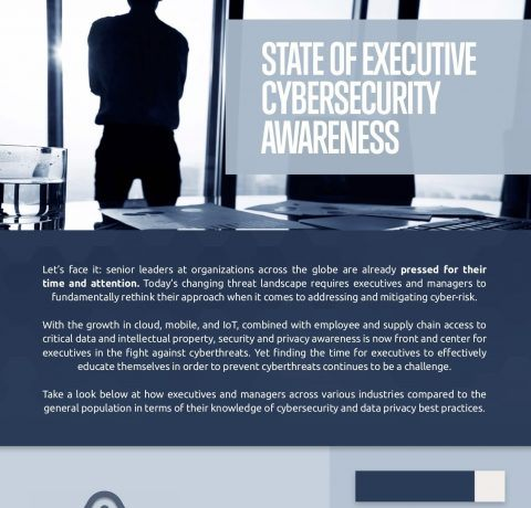 State Of Executive Cybersecurity Awareness Infographic