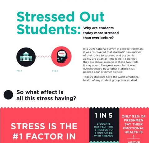 The Stressed Out Students Infographic
