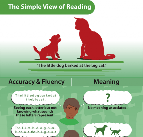 The Simple View of Reading Infographic