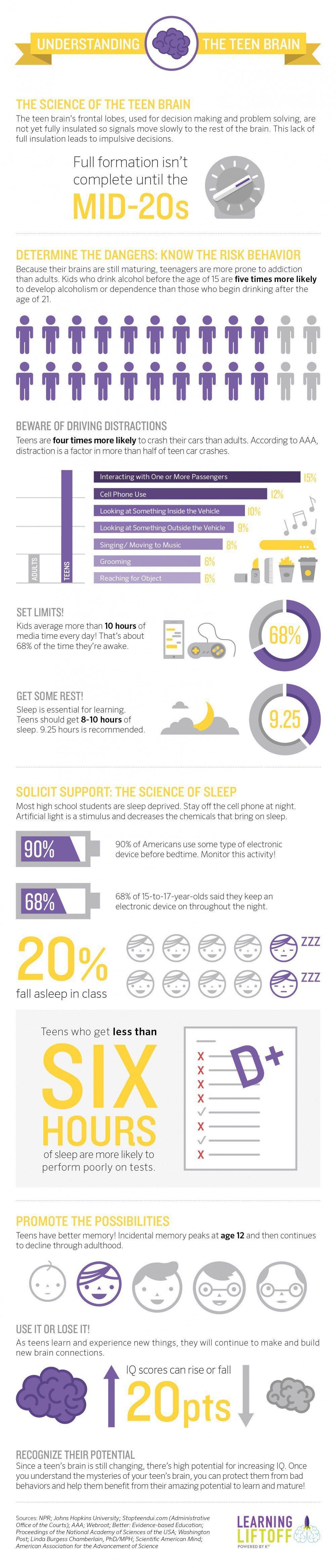 Understanding the Teen Brain Infographic