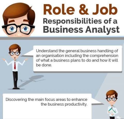 What Are The Role And Job Responsibilities Of A Business Analyst Infographic