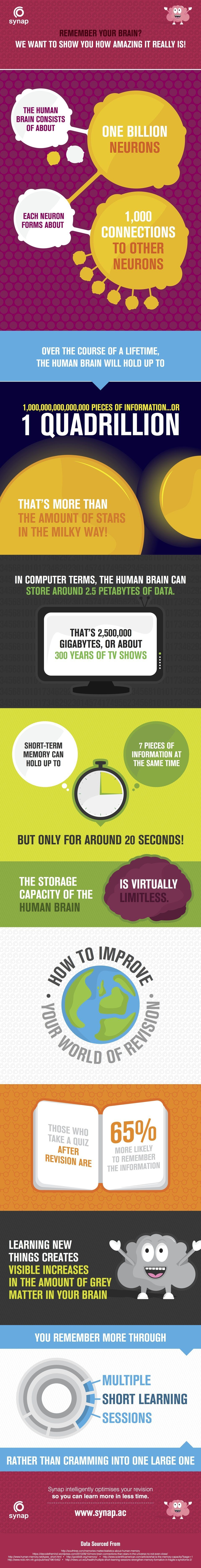 Your Amazing Memory Infographic - e-Learning Infographics