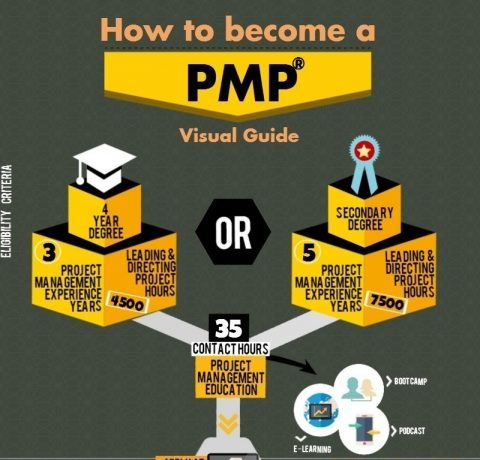 How to Become a Project Management Professional Infographic