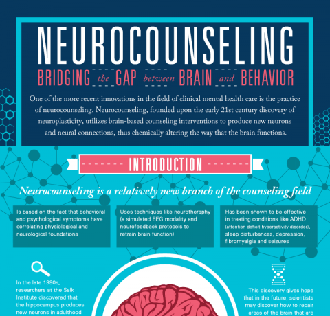 Neurocounseling: Bridging the Gap between Brain and Behavior Infographic