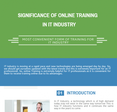 The Significance of Online Training in IT Industry Infographic